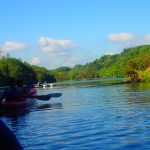 Kayak Safari West Cork